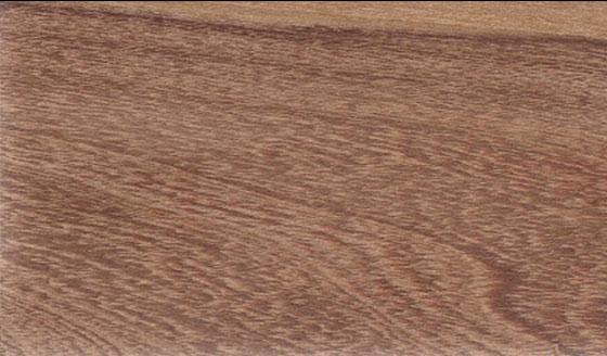 venta de madera Afata Cordia en Salta, Argentina